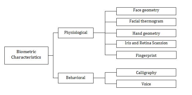 Biometric authentication overview: a fingerprint recognition sensor ...
