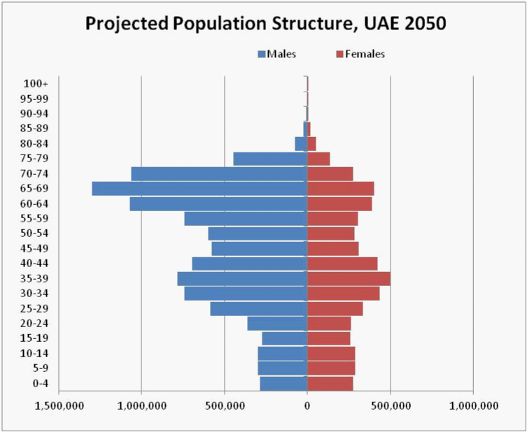 Figure 6: Projected population structure, UAE 2050.
