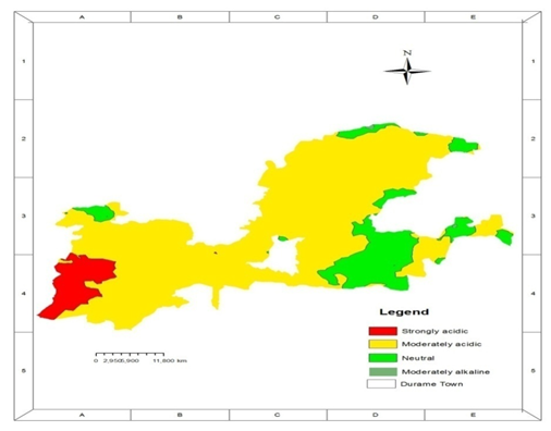 Assessment and mapping of status and spatial distribution of