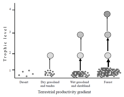 Community Structure And Trophic Level Interactions In The