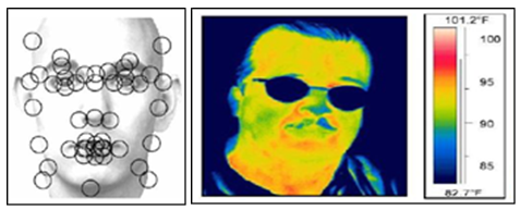 Biometric authentication overview: a fingerprint recognition