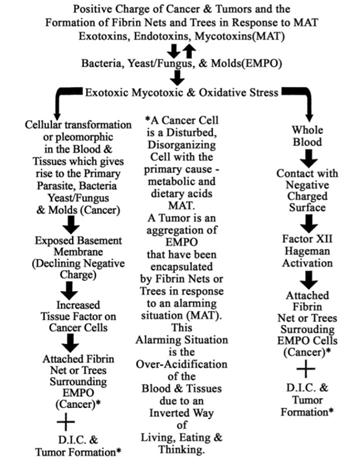 Pathological Blood Coagulation and the Mycotoxic Oxidative