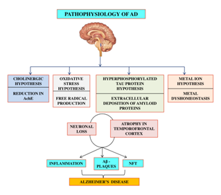 Pathophysiology and management of alzheimer's disease: an overview -  MedCrave onlineMedCrave