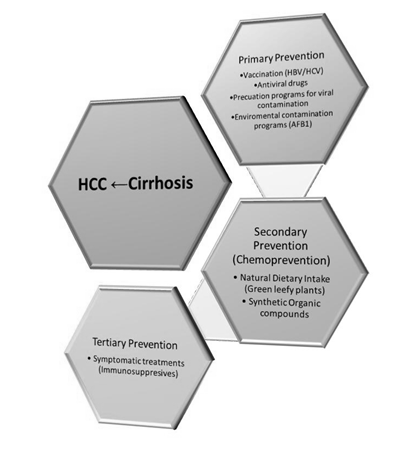 primary secondary and tertiary health promotion