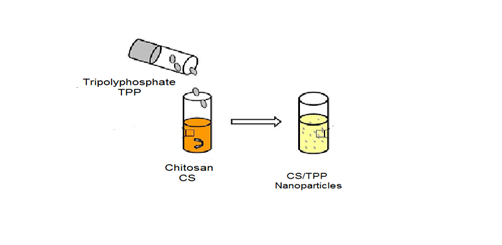 Review on micro-encapsulation with Chitosan for