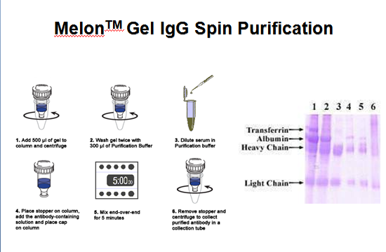 For Analysis Comparison And Different Methods Of Purification f7gybY6v