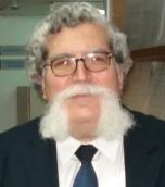 Stavros J Baloyannis